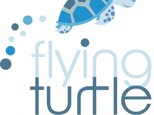 flying turtle